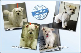 2015-06-03-Swiffer resized
