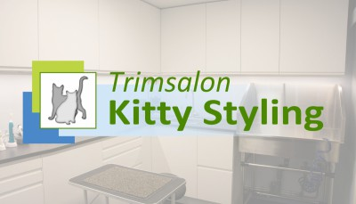 Trimsalon Kitty Styling