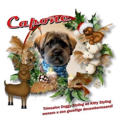 20171220 7 Capone kerst