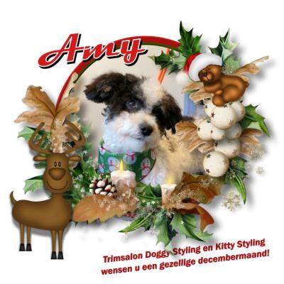 20171212 Amy kerst
