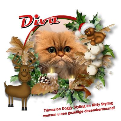 20171213 6 Diva kerst