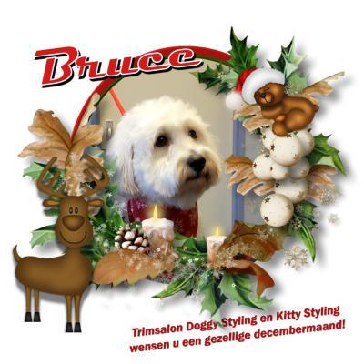 20171214 3 Bruce kerst