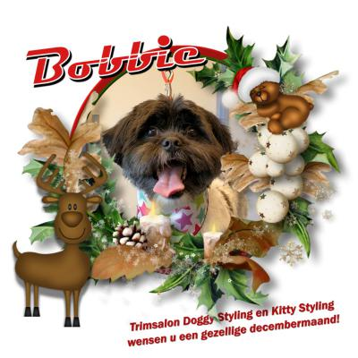20171219 2 Bobbie kerst